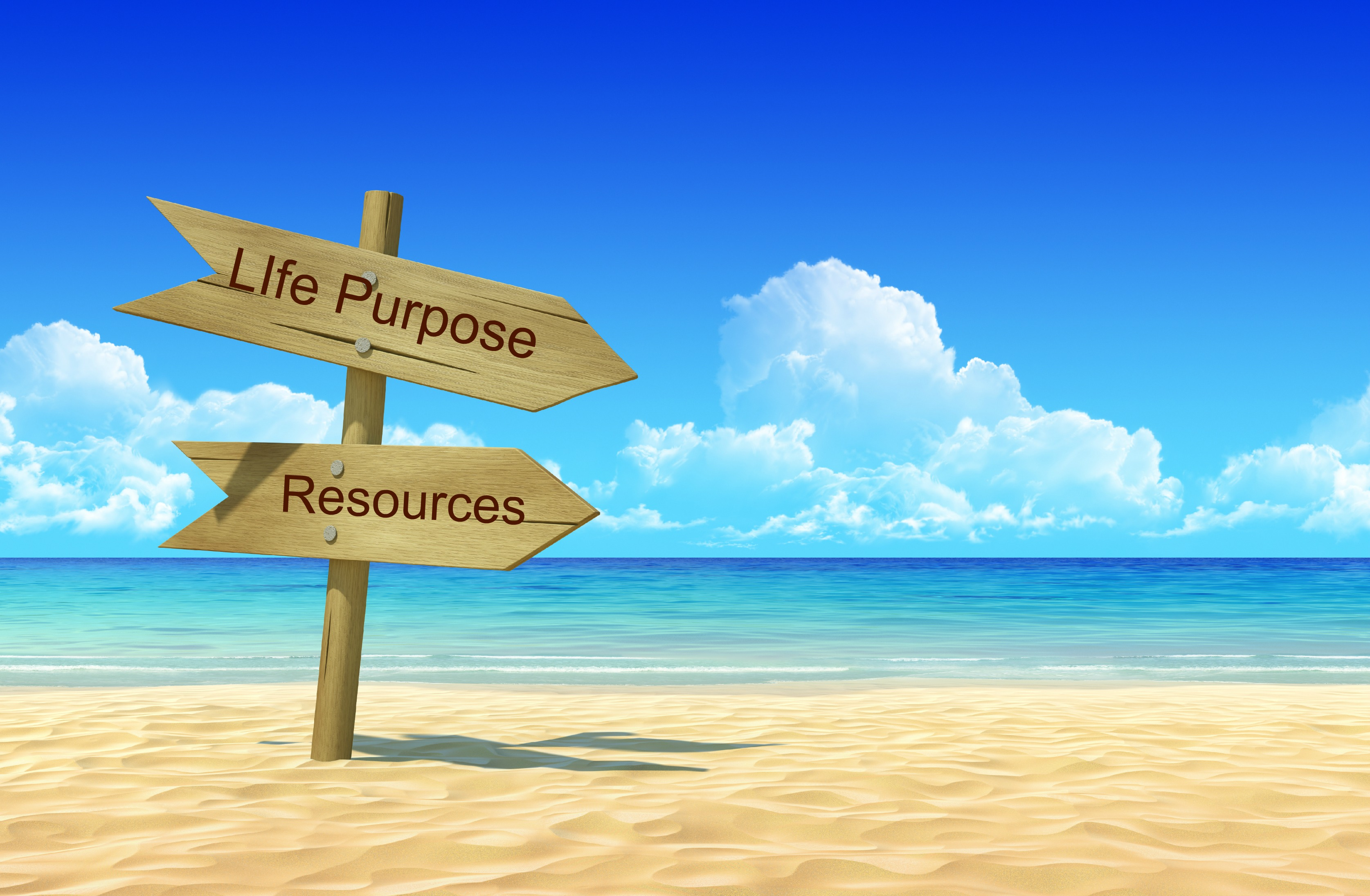 purpose in life Keep a purpose journal journaling is a useful tool for making any changes to your life or your perspective create a dedicated journal that will help you write down and explore your thoughts about your life's purpose, your passions, and your joys.